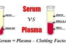 Nên sử dụng huyết thanh hay huyết tương trong xét nghiệm sinh hóa