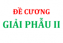 Đề cương Giải Phẫu 2 Y Thái Nguyên