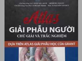 [PDF] Atlas Giải Phẫu Người Chú Giải Và Trắc Nghiệm PDF Full