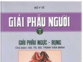 [PDF] Giải Phẫu Người - Trịnh Văn Minh (Tập 2)