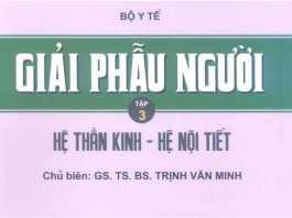 [PDF] Giải Phẫu Người - Trịnh Văn Minh (Tập 3)