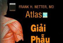 Atlas Atlas Giai phau nguoi Netter